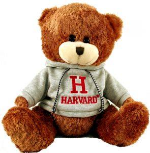 harvard-sweatshirt-bear-new