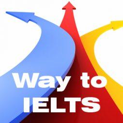 Từ học tiếng Anh đến ôn luyện, thi và hậu IELTS