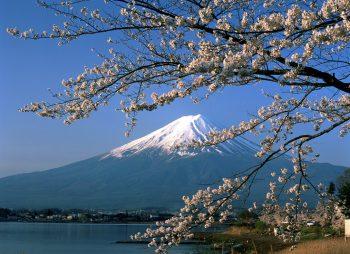 Thông báo tuyển sinh đi học sau đại học tại Nhật Bản theo học bổng Chính phủ Nhật Bản cấp năm 2014