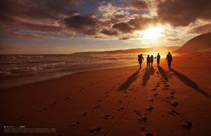 63682319-tracks-on-the-beach