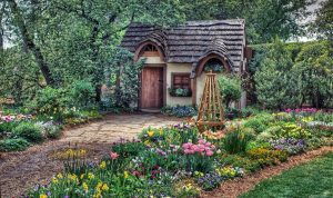 7040083-magical-cottage