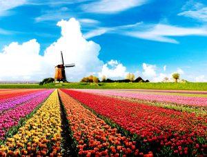 Học bổng Hà Lan năm học 2015 – 2016 dành cho khóa học ngắn ngày, Thạc sĩ, Tiến sĩ.