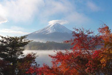2 lựa chọn phổ biến trước khi apply học bổng Nhật Bản