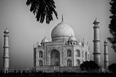 Học bổng trao đổi ngắn hạn Netaji Subhas-ICAR International tại Ấn Độ, 2016-2017
