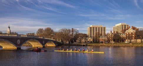 Stanford, Harvard, MIT – Những trường đại học có nhiều thành viên trong danh sách Under 30 của Forbes