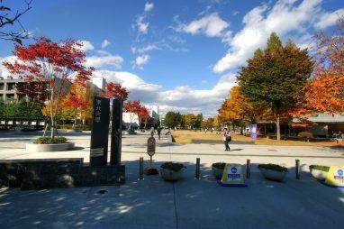 Đại học Tohoku, Nhật Bản