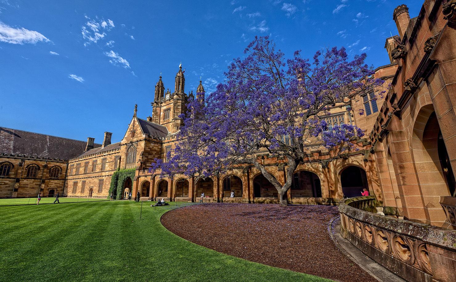 Sydney-University-2