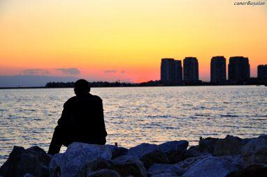 Vì nhiều lý do mà người thông minh thường cô đơn – Jim Davis