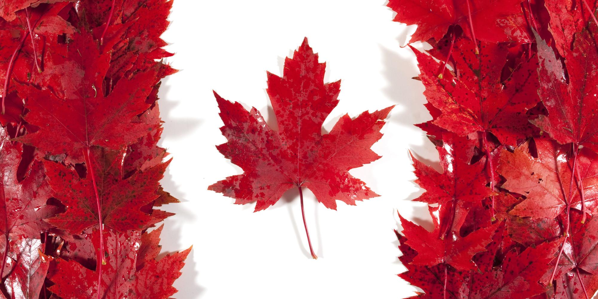 o CANADA FLAG facebook Du học Canada, Tin tức