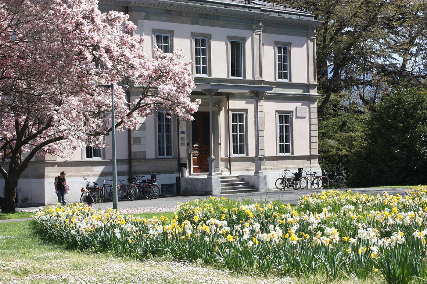 Geneva-Academy