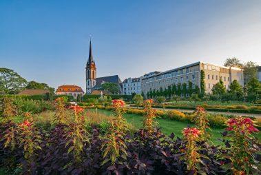 Học bổng Tiến sĩ toàn phần, IMPRS-CellDevoSys, Đức, 2018