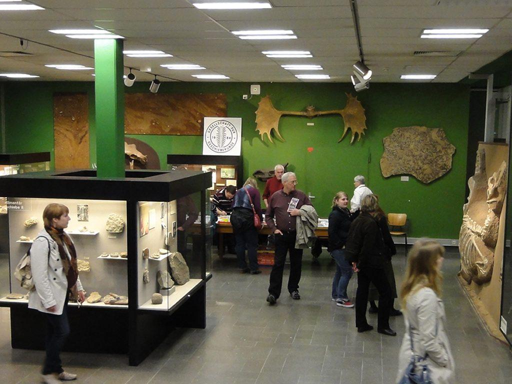 geologisch-palaeontologisches-museum-bild