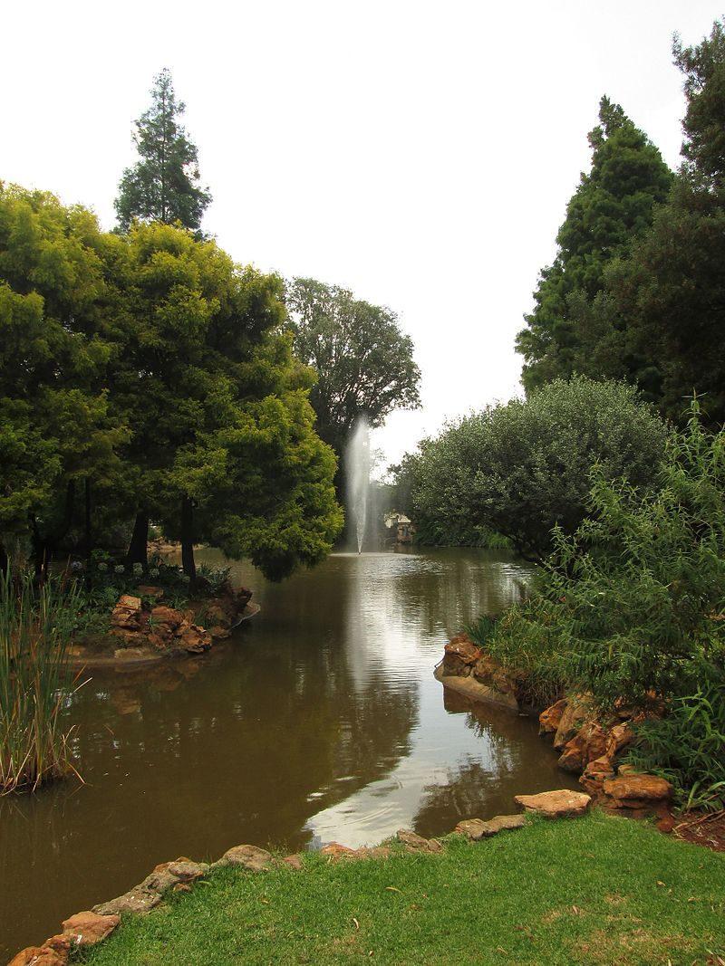 Pond_by_the_Gavin_Reilly_Green,_Wits_University