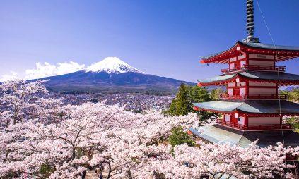 Học bổng Japan-WCO , Nhật Bản, 2018