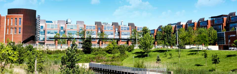university-ontario-institute-of-technology-campus-image